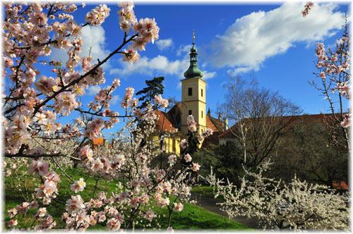 spring_prague
