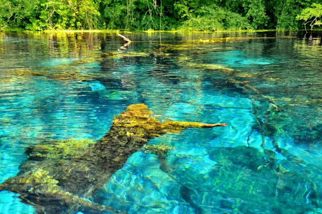 blue-waters-of-the-blue-eye-spring